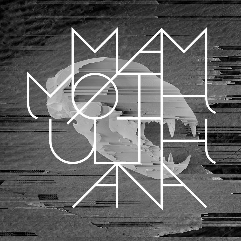 Mammoth Ulthana – Jacek Doroszenko and Rafał Kołacki, Particular Factors album cover